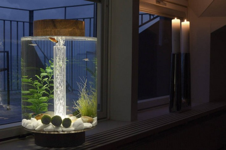 Cylindrical shaped aquarium 02 740x494